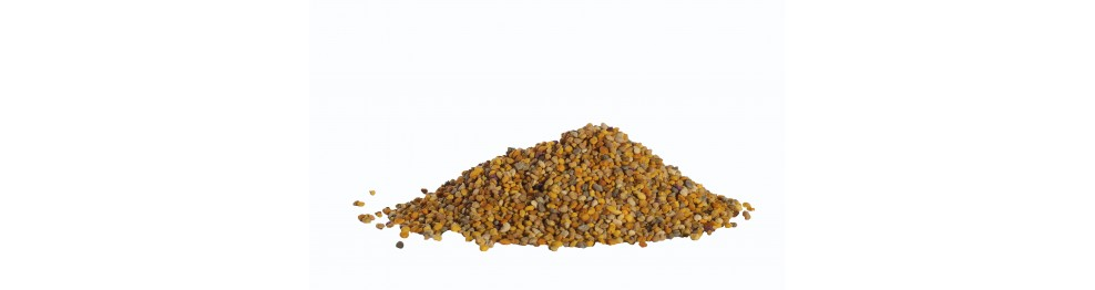Bijen Pollen